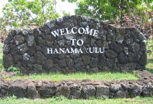 welcometohanamalu.jpg